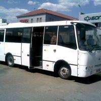 Автобусы класса Стандарт.